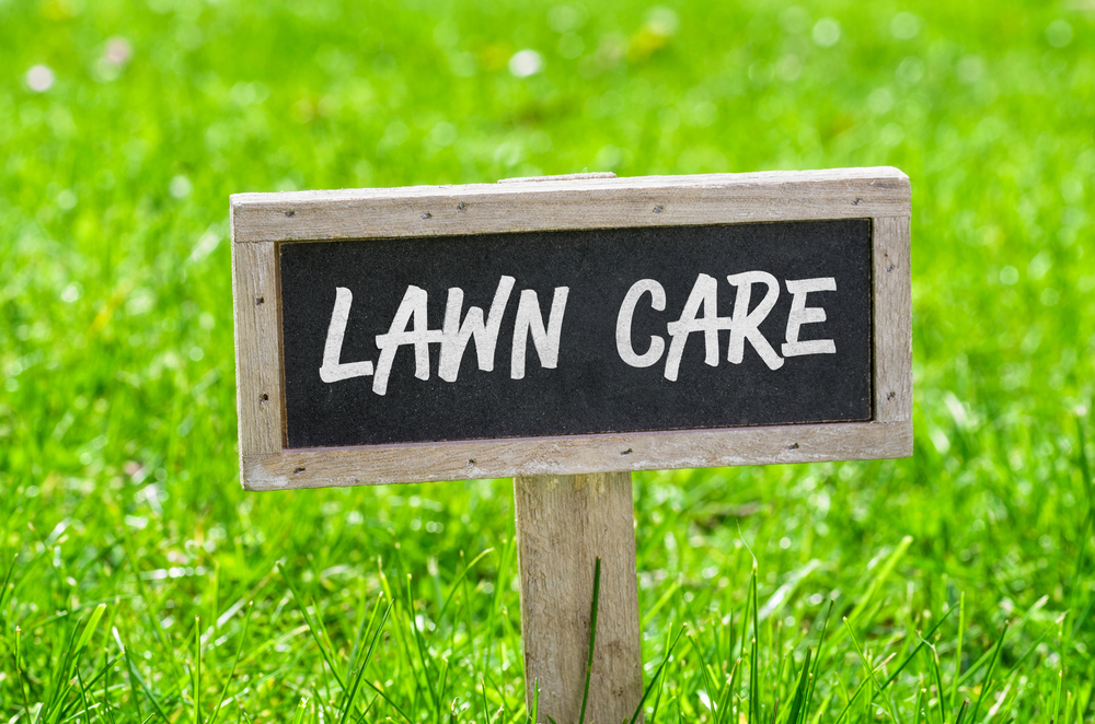 Common Lawn Care Mistakes